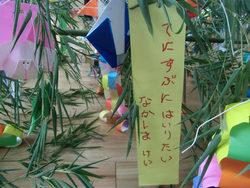 七夕4.jpg